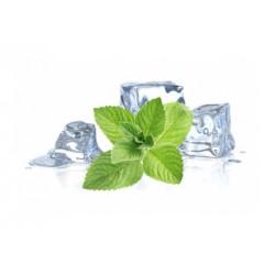 Basic 60ml Icy Menthol